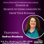Andrea Stenberg | Secrets to Using LinkedIn to Grow Your Business